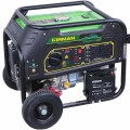 Firman RD9000E - 7500 Watt Dual Fuel Electric Start Portable Generator
